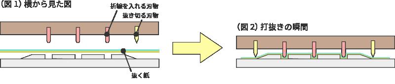 (図1)横から見た図 ▼木型 ▲面板 折線を入れる刃物 抜き切る刃物 抜く紙